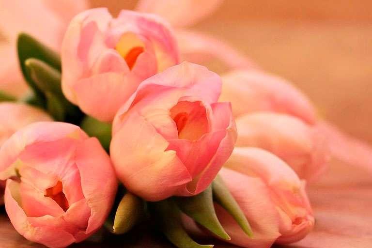 С наступлением весны и Днем 8 Марта!