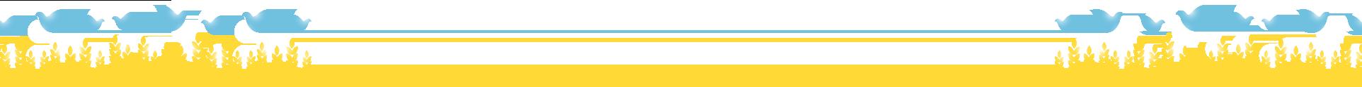 Магазин медицинской техники Baldinelli-1